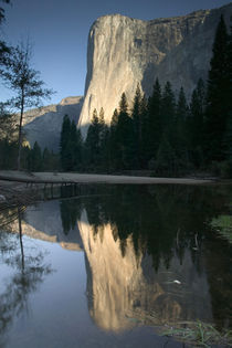 ) Dawn View w/Merced River Reflection von Danita Delimont