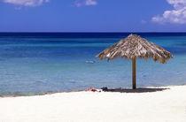 Netherlands Antilles by Danita Delimont