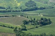 Italy by Danita Delimont
