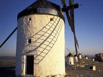 Windmills and castle in the distance von Danita Delimont
