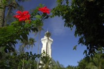 Hibiscus in front of Venus Point Lighthouse (aka Pointe Venus) von Danita Delimont