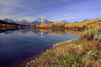 Moran and Oxbow Bend von Danita Delimont