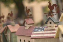 Cedarburg: Quaint Wisconsin Village Painted Birdhouses von Danita Delimont