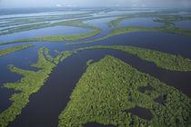 Amazonia BRAZIL von Danita Delimont