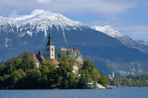 Bled Castle and Julian Alps von Danita Delimont