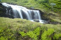 Waterfall von Danita Delimont