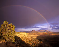 Rainbow from Gooseberry Mesa looking to Smithsonian Butte near Virgin Utah von Danita Delimont