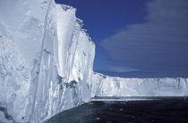 Mertz Glacier by Danita Delimont