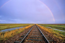 Rainbow over railroad tracks near Fairfield Montana by Danita Delimont
