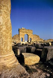 Tunisia von Danita Delimont