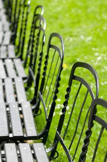 Vienna: Park Benches / Burggarten / Palace Gardens von Danita Delimont