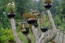 Teapots sprout from branches in a whimsical display at the Fantasy Garden in KIngsbrae Garden by Danita Delimont