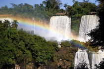 The breathtaking waterfalls of Puerto Iguazu and Foz de Iguazu (Brazil) von Danita Delimont