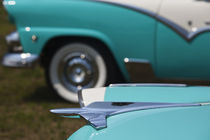 1950s-era Ford cars at an antique car show von Danita Delimont