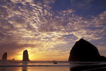 Canon Beach with haystack rock and needles von Danita Delimont