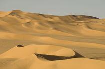 Libya von Danita Delimont