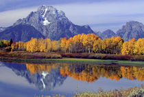 Moran reflecting in Oxbow Bend by Danita Delimont