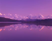 Evening light on Alaska Range from north end of Wonder Lake by Danita Delimont