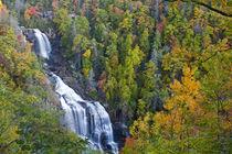 Whitewater Falls in the Nantahala National Forest of North Carolina von Danita Delimont