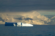 Ice Berg in the starts of the Drake Passage just off of the Antarctica Peninsula by Danita Delimont