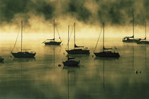 The early morning sun burns off a mist on Lake Dillon where boats lie at anchor von Danita Delimont