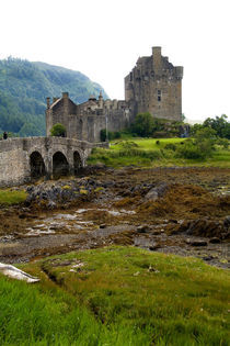 Beautiful Eileen Donan Castle in Western Dornie in Highlands of Scotland by Danita Delimont