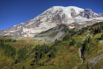 Rainier and fall foliage by Danita Delimont