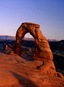 Delicate Arch at Sunset with snow covered La Sal mountains in the background by Danita Delimont