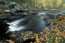 Autumn leaves at Packers Falls on the Lamprey River by Danita Delimont
