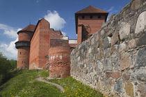 Turaida Castle von Danita Delimont