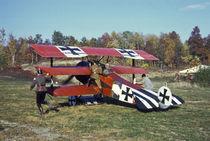 WWI Fokker Triplane taxiing by Danita Delimont