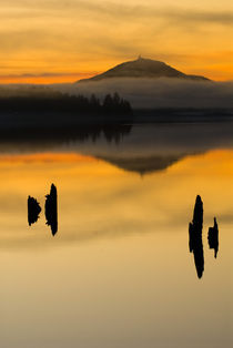 Sunset on Lake Quinault by Danita Delimont