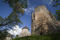 Cesis Castle von Danita Delimont