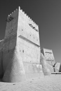 Traditional Arabian Gulf Defensive Structure by Danita Delimont