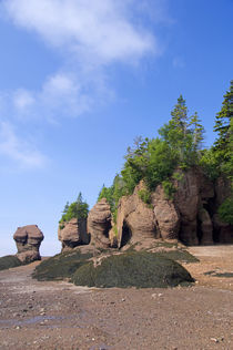Hopewell Rocks at low tide (aka Flowerpot Rocks) by Danita Delimont
