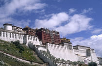 Potala Palace on mountain the home of the Dalai Lama in capital city of Lhasa Tibet China by Danita Delimont