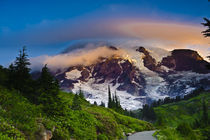 Rainier along the Skyline Trail von Danita Delimont