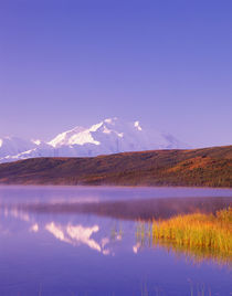 McKinley in morning light from north end of Wonder Lake by Danita Delimont