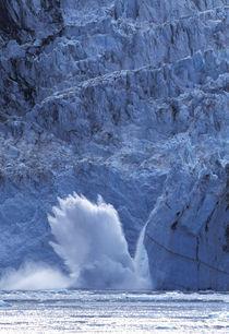 Harriman Fjord von Danita Delimont