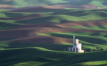 The Steptoe grain elevator from Steptoe Butte by Danita Delimont