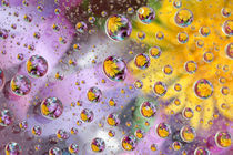 Bubbles abstract with flowers by Danita Delimont