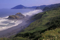 Oregon coastline and seastacks by Danita Delimont