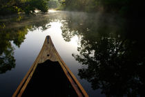 Canoeing Alexander Springs Creek early morning by Danita Delimont