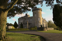 The Dromoland Castle side entrance and turret by Danita Delimont