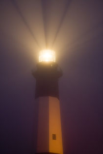 Tybee Island Lighthouse at dawn von Danita Delimont