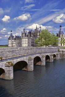 The largest chateau in the Loire Valley in France by Danita Delimont