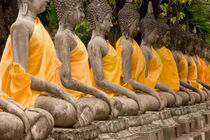 Buddhas at Ayutthaya by Danita Delimont