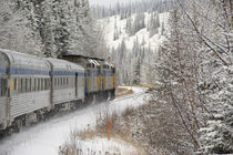 VIA Rail Snow Train between Edmonton & Jasper by Danita Delimont