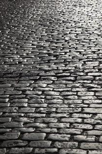 Calle San Jose cobblestones by Danita Delimont