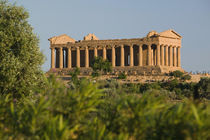 The Temple of Concordia (430 BC) by Danita Delimont